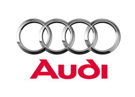 Audi a Volkswagen group premium brand Barreiros have done moulds for Pillars, Hooks, Sliders, Supports.